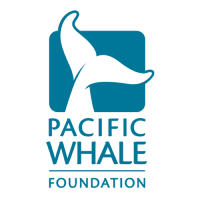Pacific Whale FDN